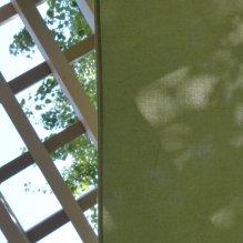 1-P2460166